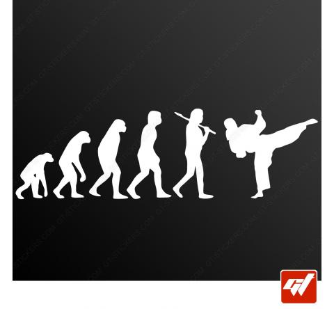 Stickers Fun/JDM - Karaté évolution