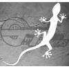 Stickers Gecko Lezard Audi