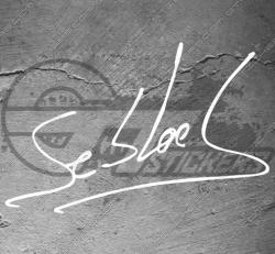 Stickers Signature Sébastien Loeb