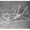 Stickers Signature Sébastien Loeb