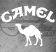 Stickers Camel Logo