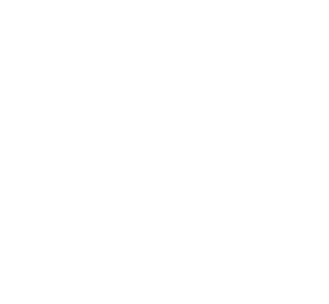 Stickers Man Demi Lion