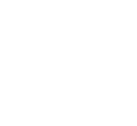Stickers Scania Topline