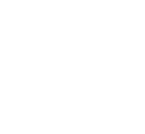 Planche XXL - 22 Stickers Kawasaki ZZ-R 1100