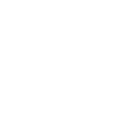 Sticker canard en vol 2