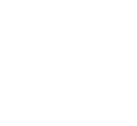 Sticker 2 Dragon Tribal