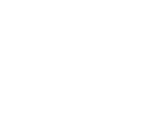Sticker Flaming Racer 208