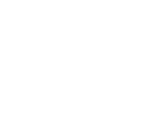 Sticker The North Face