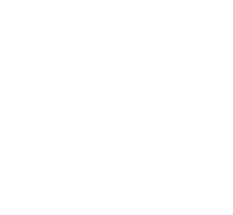 Sticker Salamandre 5