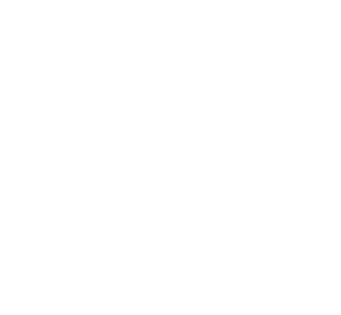 Sticker Tigre 5