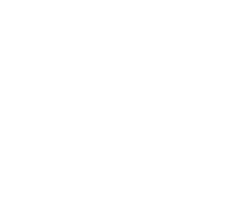 Sticker Handicapé Flammes 2