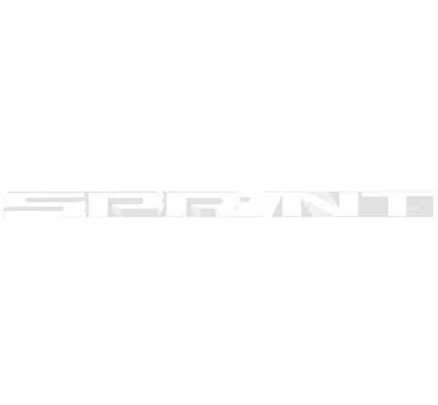 Stickers Triumph Sprint