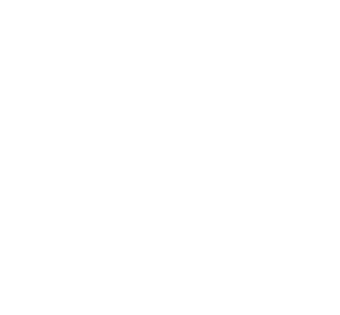Stickers Logo Triumph 675cc